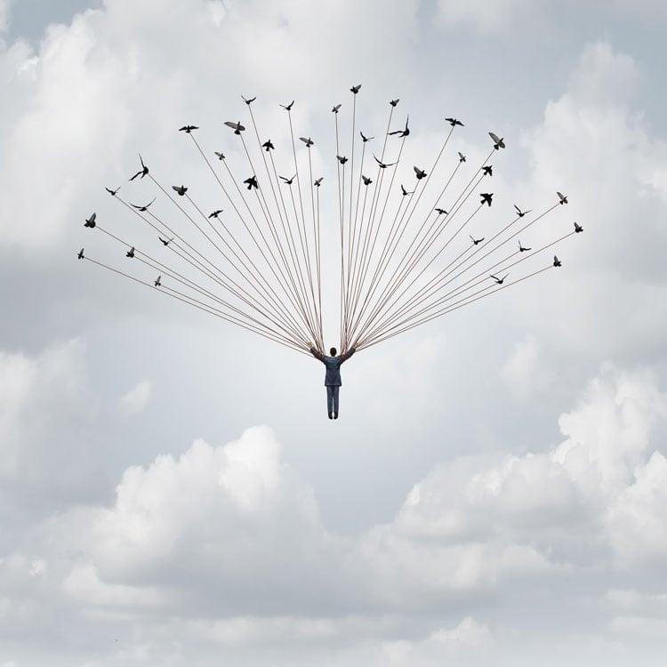 Photo Illustration of man and birds