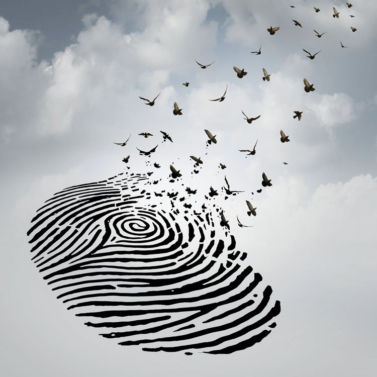Photo illustration of a fingerprint and birds
