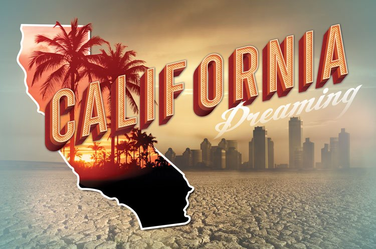 California Asserts Global Power In Defiance Of Trump