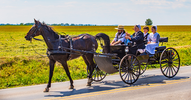 amish family ordered by state appellate court to use electric sewer pump