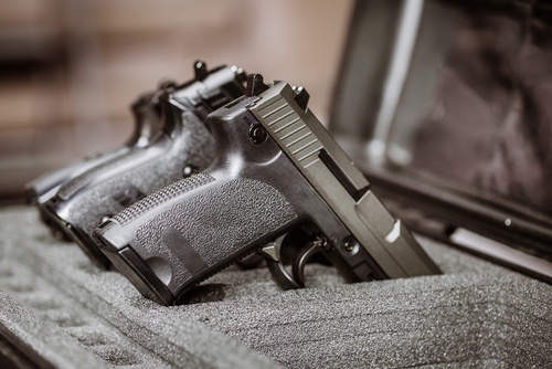 guns in case