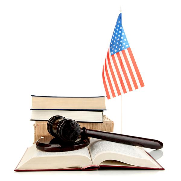 American flag, books and a gavel