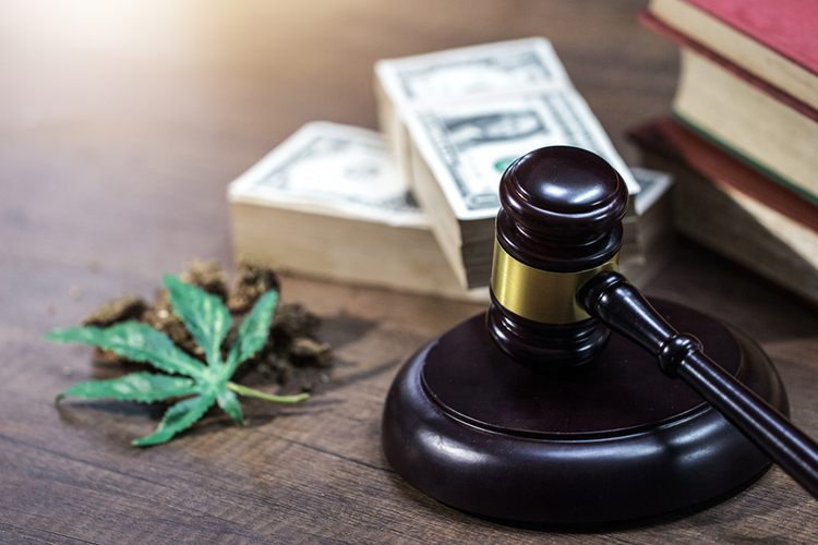 cannabis, cash and a gavel.