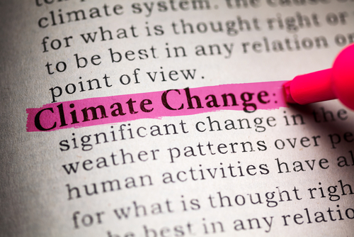 climate change written in pink hilighter