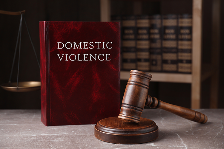 Book about domestic violence standing next to a gavel inside a law library
