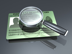 green card and magnifying glass