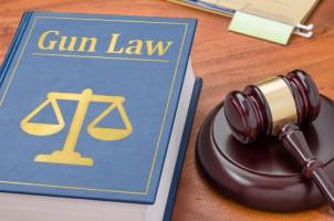 gun law book