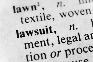 lawsuit dictionary