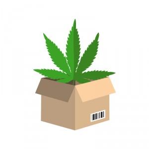 marijuana box