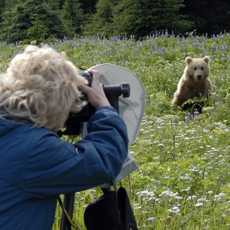 Photographer and grizzly bear