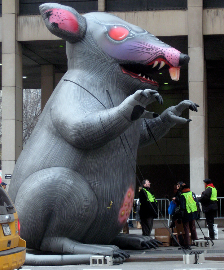 scabby the rat flickr