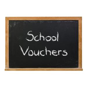 A blackboard with the term school vouchers written in chalk