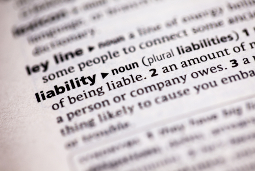 liability words in dictionary