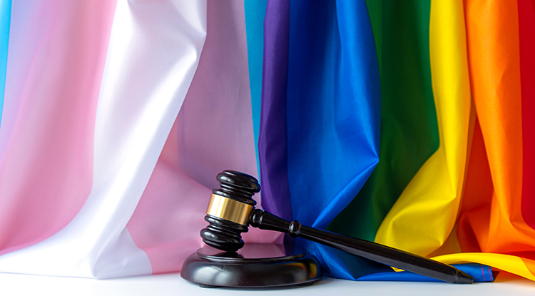 transgender and lgbt flags and a gavel