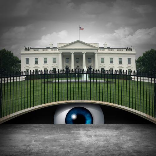 white house spy concept